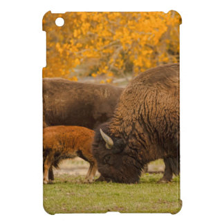 Bison Family Nation Cover For The iPad Mini