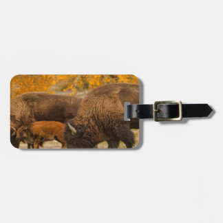 Bison Family Nation Luggage Tag