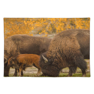 Bison Family Nation Placemat