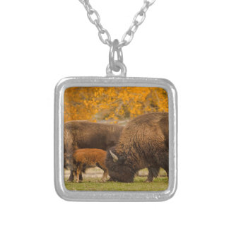 Bison Family Nation Silver Plated Necklace
