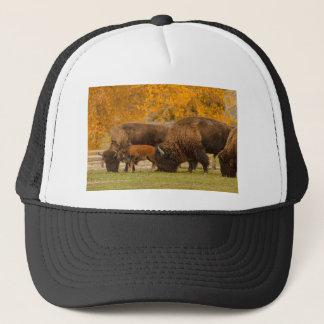 Bison Family Nation Trucker Hat