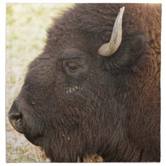 Bison Headshot Profile Napkin