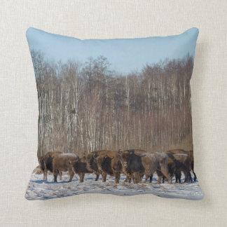 Bison Herd Cushion