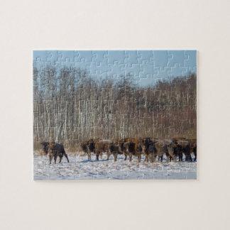 Bison Herd Jigsaw Puzzle