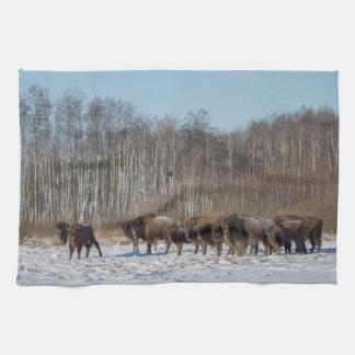 Bison Herd Tea Towel