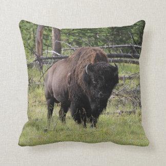 Bison of Yellowstone Photo Cushion