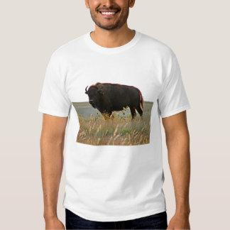 Bison Photo Sculpture T-Shirt