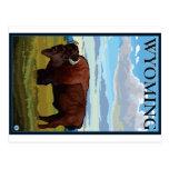 Bison Scene - Wyoming Postcard