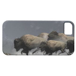 Bison Stampede iPhone 5 Cases