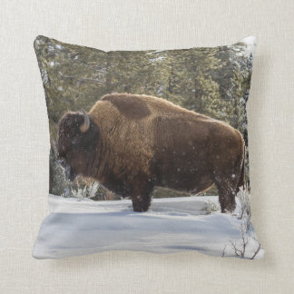 Bison standing in snow cushion