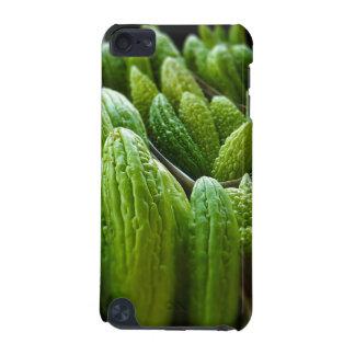 Bitter Melon Cucumber City Market Kansas City iPod Touch 5G Cases