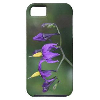 Bittersweet nightshade (Solanum dulcamara) Case For The iPhone 5