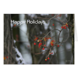 Bittersweet Winter Holiday Card