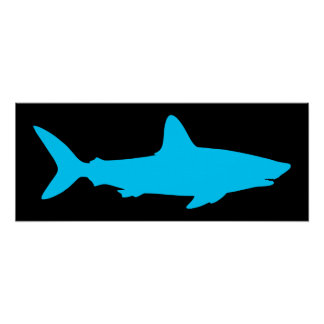 Black and Aqua Shark Poster