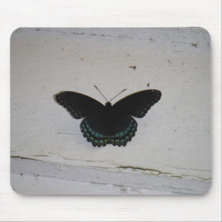 Black and Blue Butterfly on white washed wood Mouse Pad