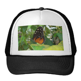 Black and Orange Butterfly with White Spots Trucker Hat
