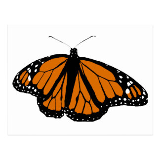 Black and Orange Monarch Butterfly Postcard