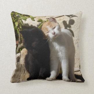 Black and orange white cute kittens throw cushions