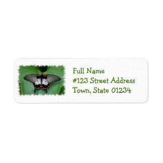 Black and Pink Swallowtail Butterfly Mailing Label Return Address Label