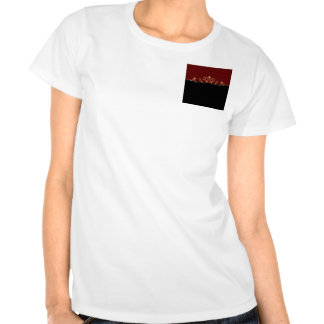 Black and Red Damask Gold Scroll Tee Shirts