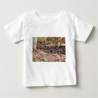 BLACK AND RED FINCH IN RURAL QUEENSLAND AUSTRALIA T SHIRT