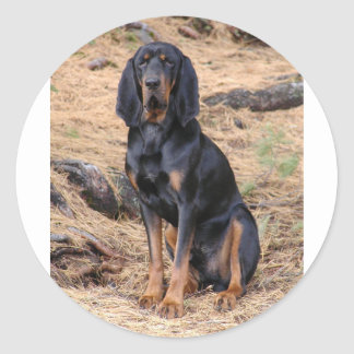 Black and Tan Coonhound Dog Classic Round Sticker