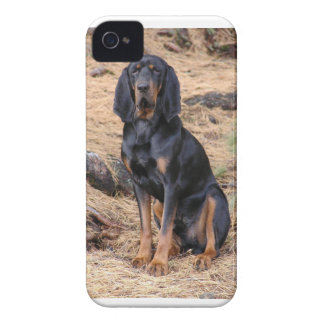 Black and Tan Coonhound Dog iPhone 4 Case-Mate Cases