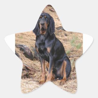 Black and Tan Coonhound Dog Star Sticker