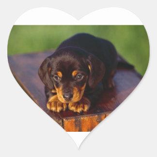 Black And Tan Coonhound Puppy Heart Sticker