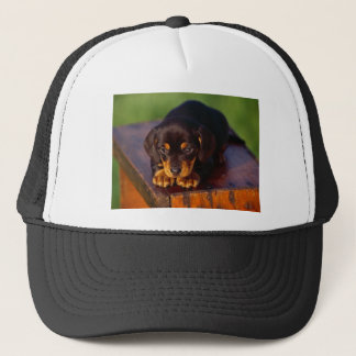 Black And Tan Coonhound Puppy Trucker Hat