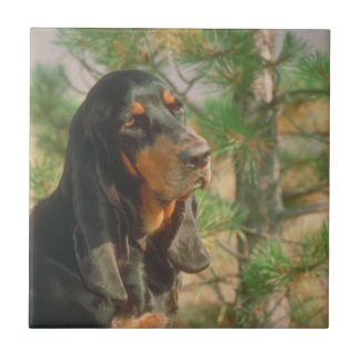 Black and Tan Coonhound Tile