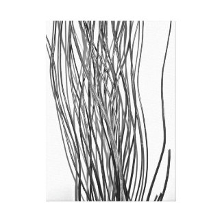 Black and White abstract sticks Canvas Print