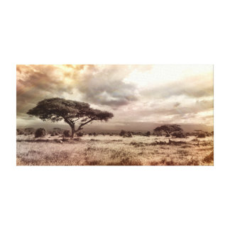 Black and White Acacia on the African Savanna Canvas Print