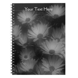Black And White African Daisy Flowers Notebook