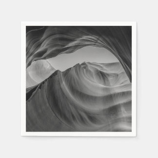 Black and White Antelope Canyon Disposable Serviette