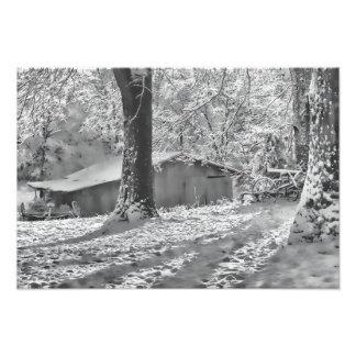 Black and White Backlit Rural Snow Scene Photo