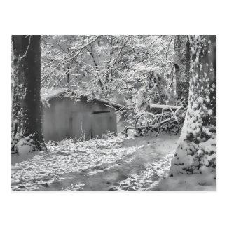 Black and White Backlit Rural Snow Scene Postcard