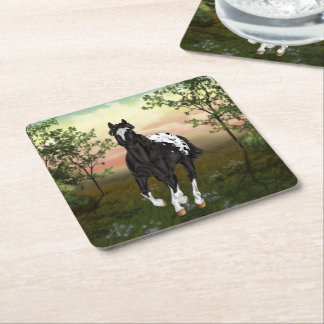 Black and White Blanket Appaloosa Horse Square Paper Coaster