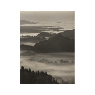 Black and White Bled Wood Poster