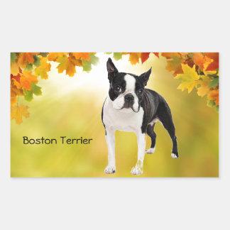 Black and White Boston Terrier Rectangular Sticker