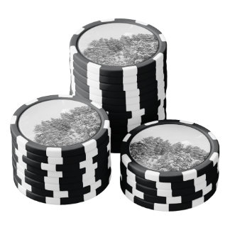 Black and White Bryce Canyon Poker Chips