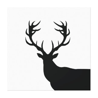 Black and White Buck Canvas Print