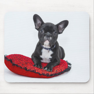 Black and White Bulldog Terrier on Red Pillow Mouse Pad