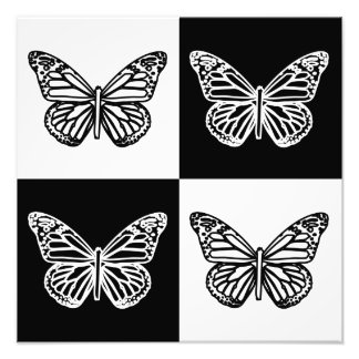 Black and white butterflies photo print