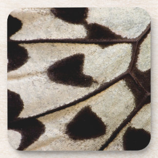 Black and white butterfly wing coaster