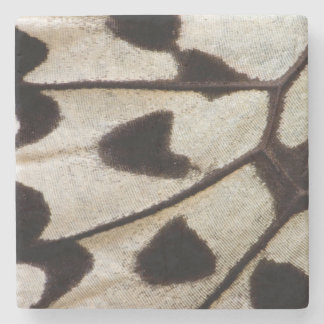 Black and white butterfly wing stone coaster