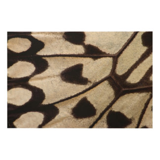 Black and white butterfly wing wood print