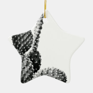 Black and White cactus black and blank Ceramic Star Decoration