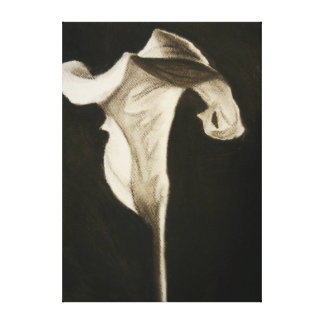 Black and White Calla Lily Gallery Wrapped Canvas