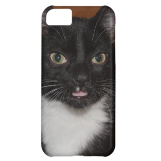 BLACK AND WHITE CAT COVER FOR iPhone 5C